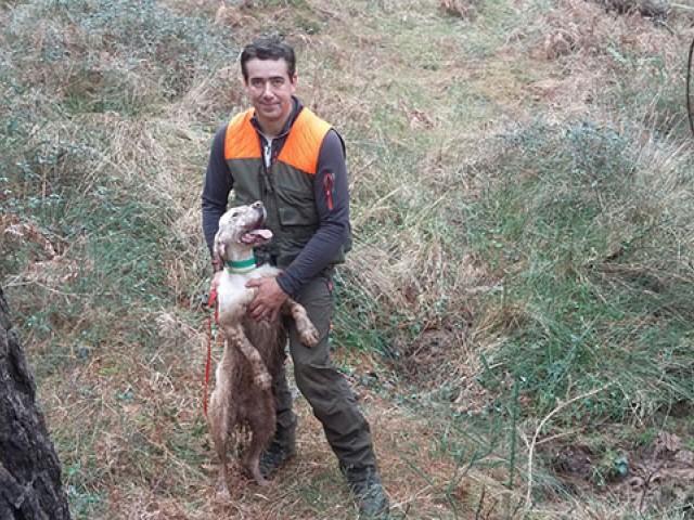 II Campeonato Regional de Perros Muestra sobre Becada para Cazadores