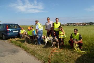 Campeonato de perros de rastro atraillados sobre jabalí organizado por el CDB Cabo de Ajo
